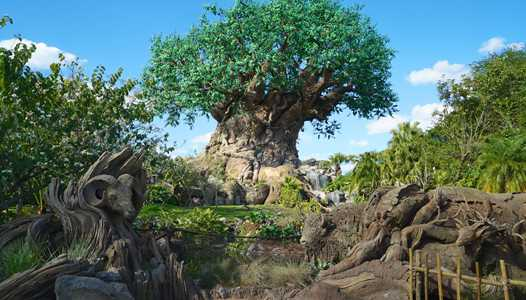 Disney's Animal Kingdom VP Djuan Rivers to retire