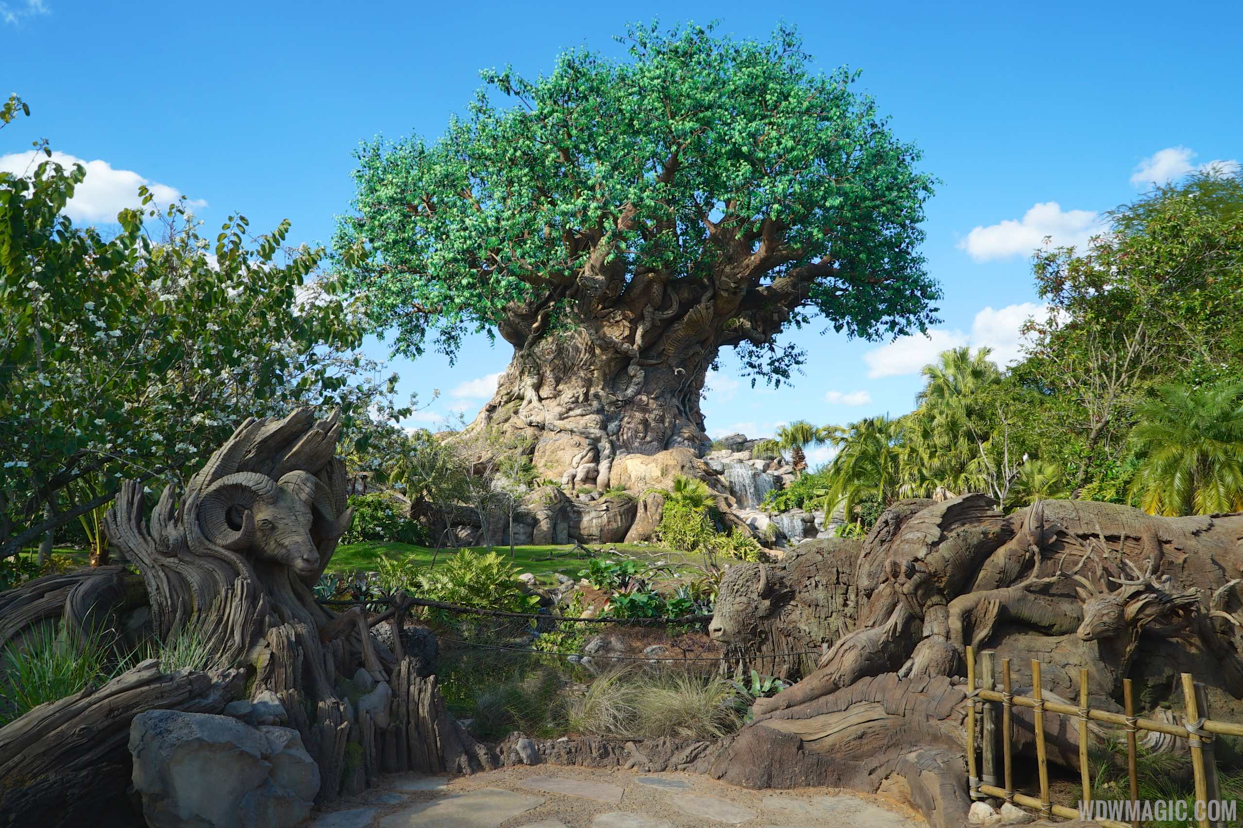 Tree of Life - the centerpiece of  Disney's Animal Kingdom