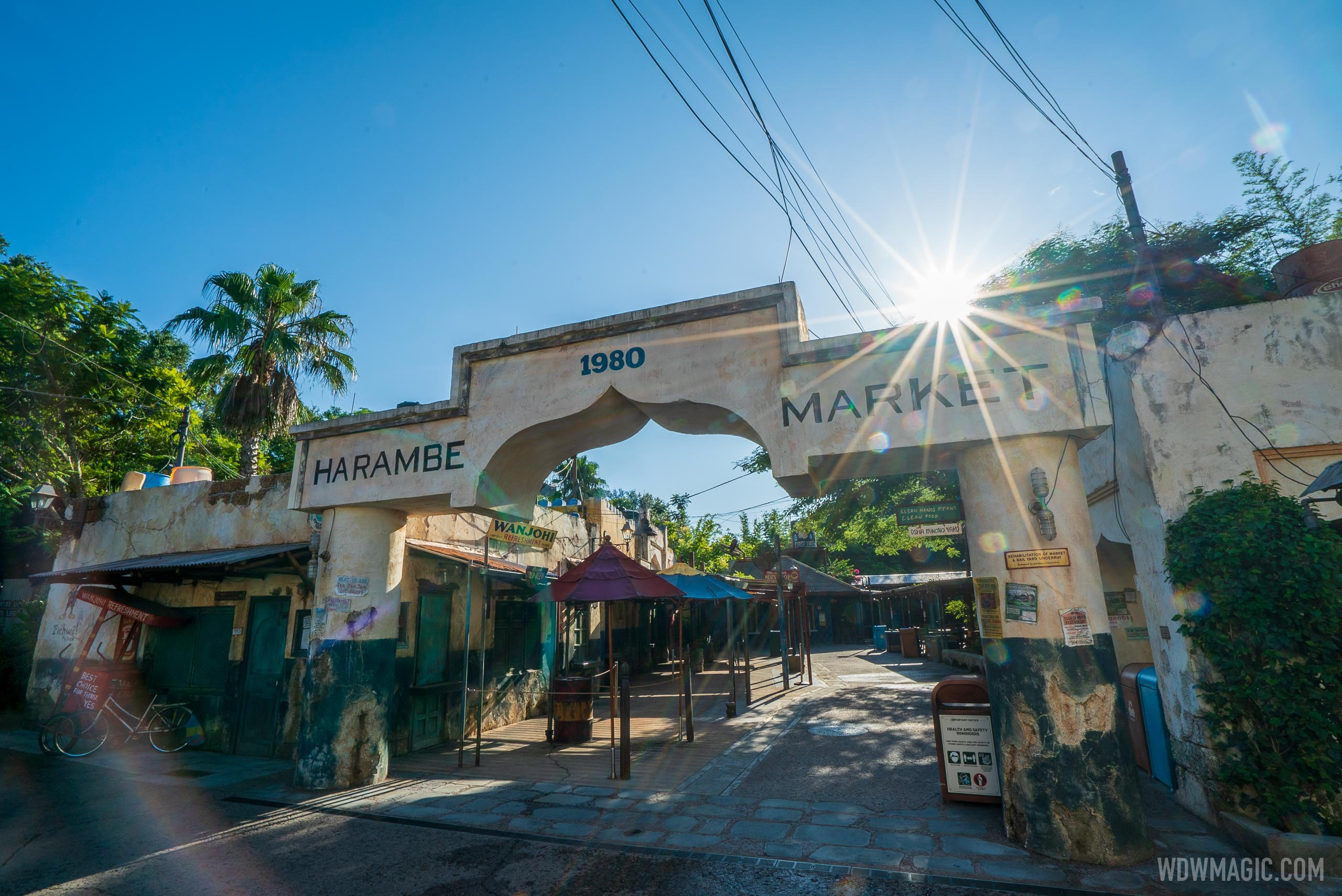 Disney's Animal Kingdom is full of incredibly authentic design