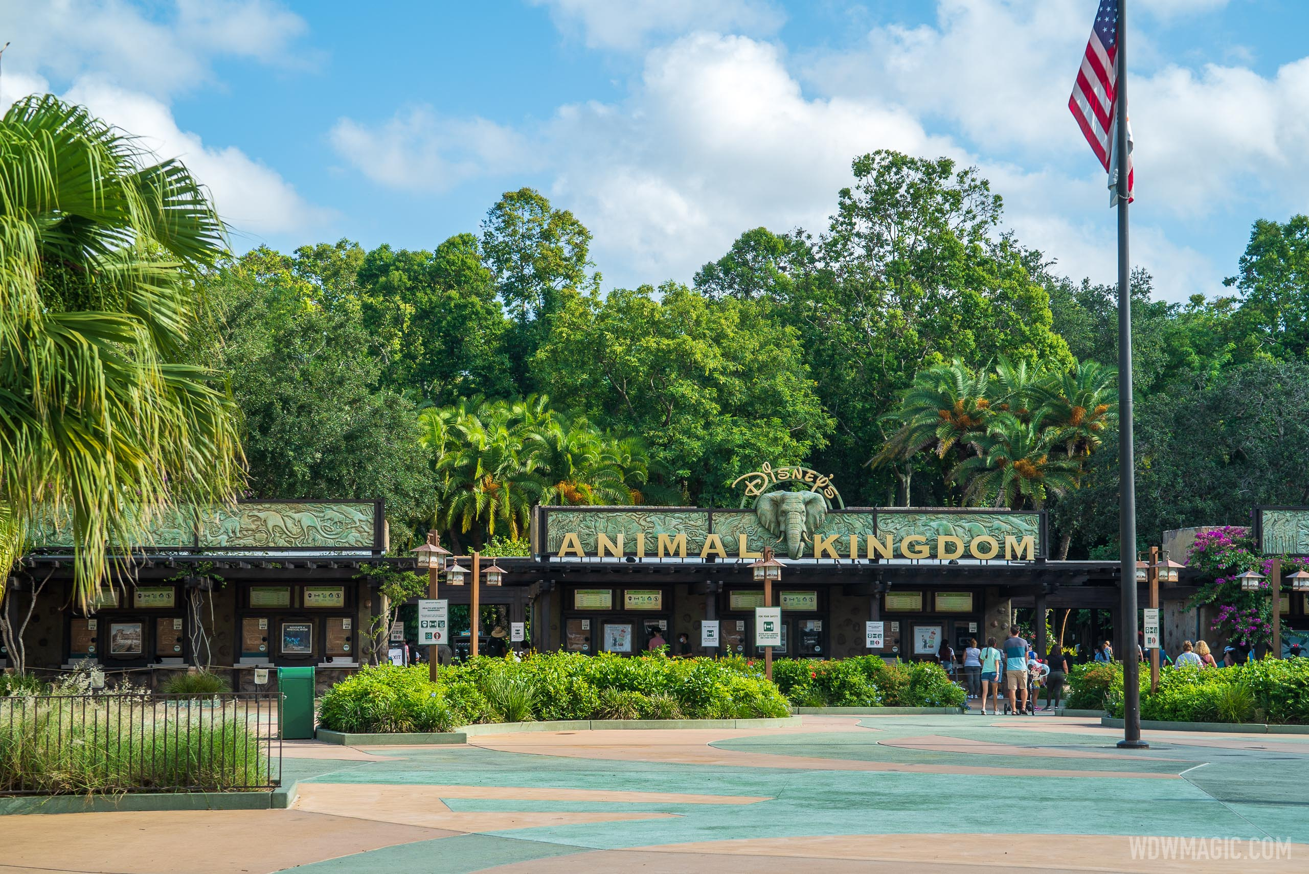 Disney's Animal Kingdom walk-through with COVID-19 restrictions