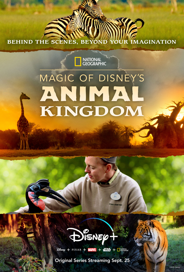 Magic of Disney's Animal Kingdom on Disney+