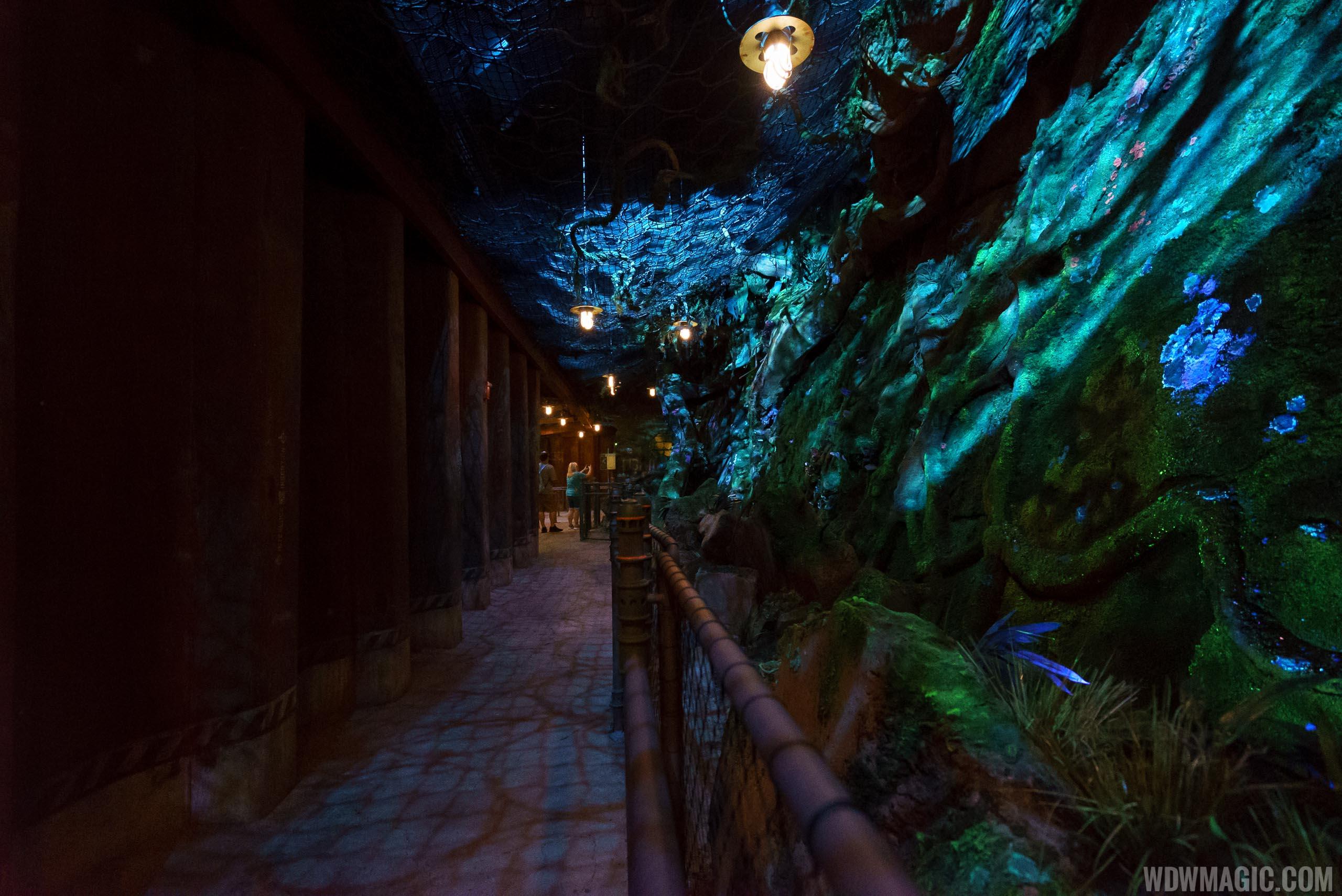 Avatar Flight of Passage queue - Bioluminescence rock work