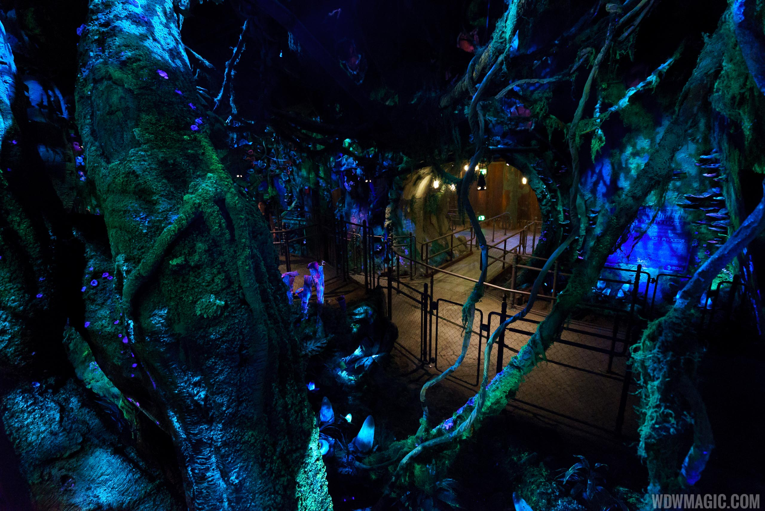 Avatar Flight of Passage queue - Looking down to the queue space