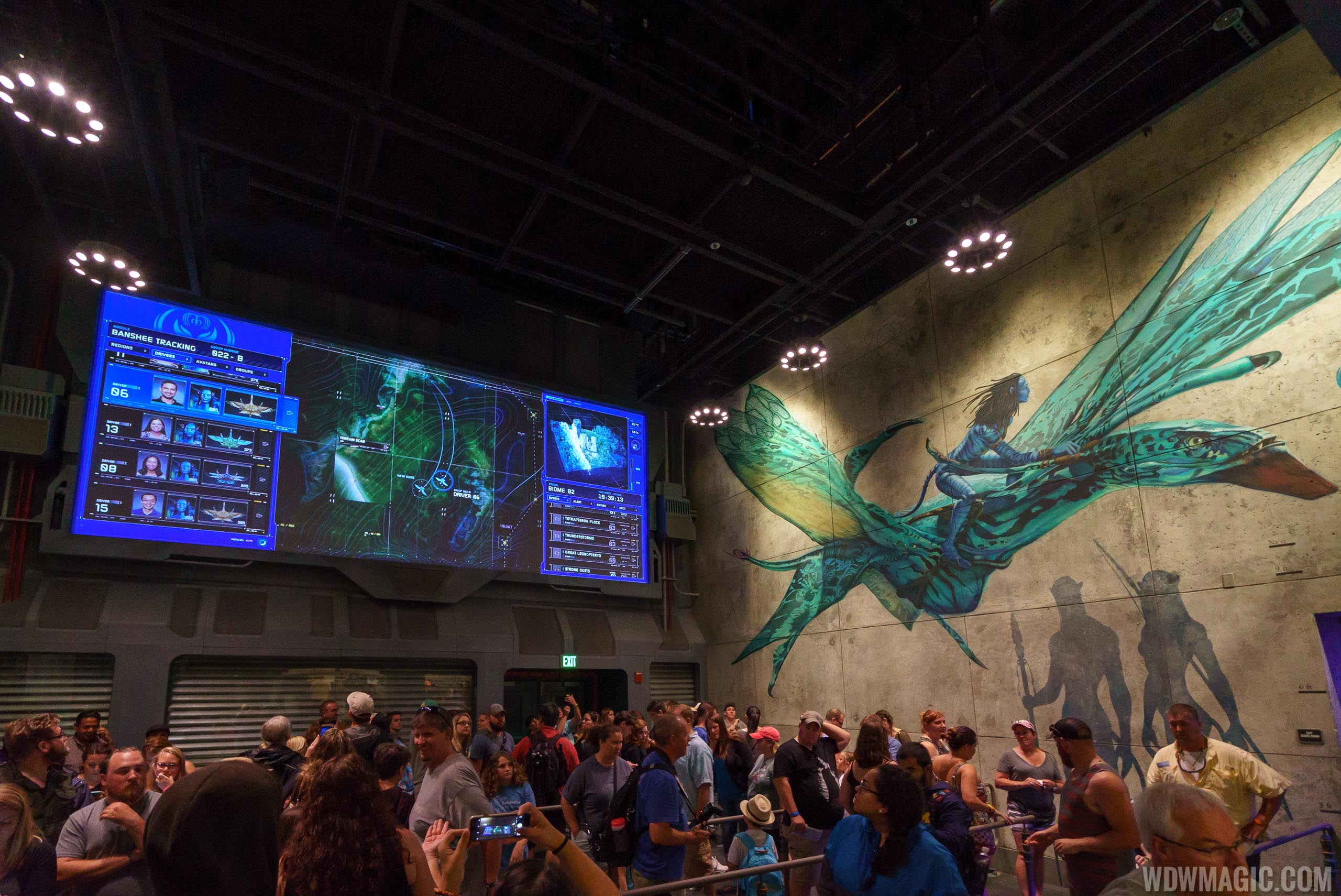 Avatar Flight of Passage tour