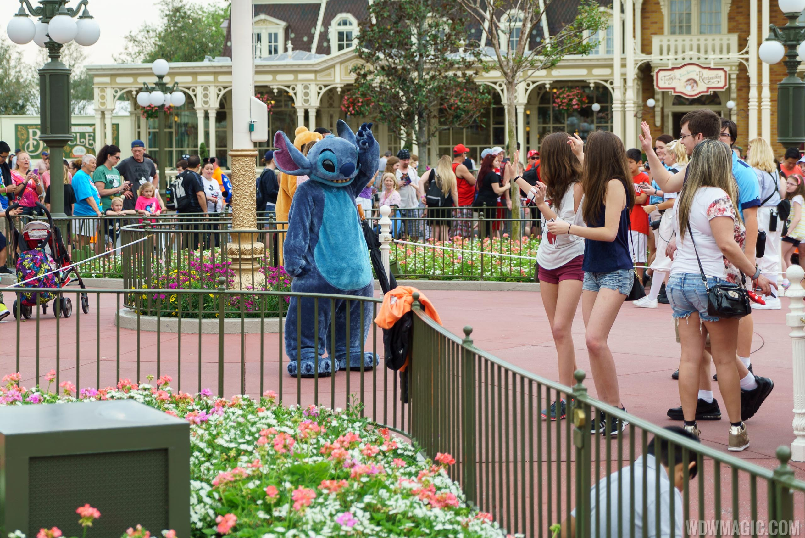 Stitch meet and greet in Town Square at the Magic Kingdom