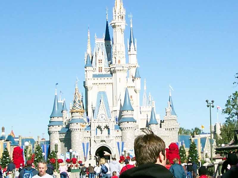 Cinderella Castle overlay prototype