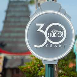 Disney's Hollywood Studios 30th Anniversary banners