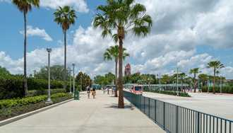 PHOTOS - New tram drop off and bag check opens at Disney's Hollywood Studios