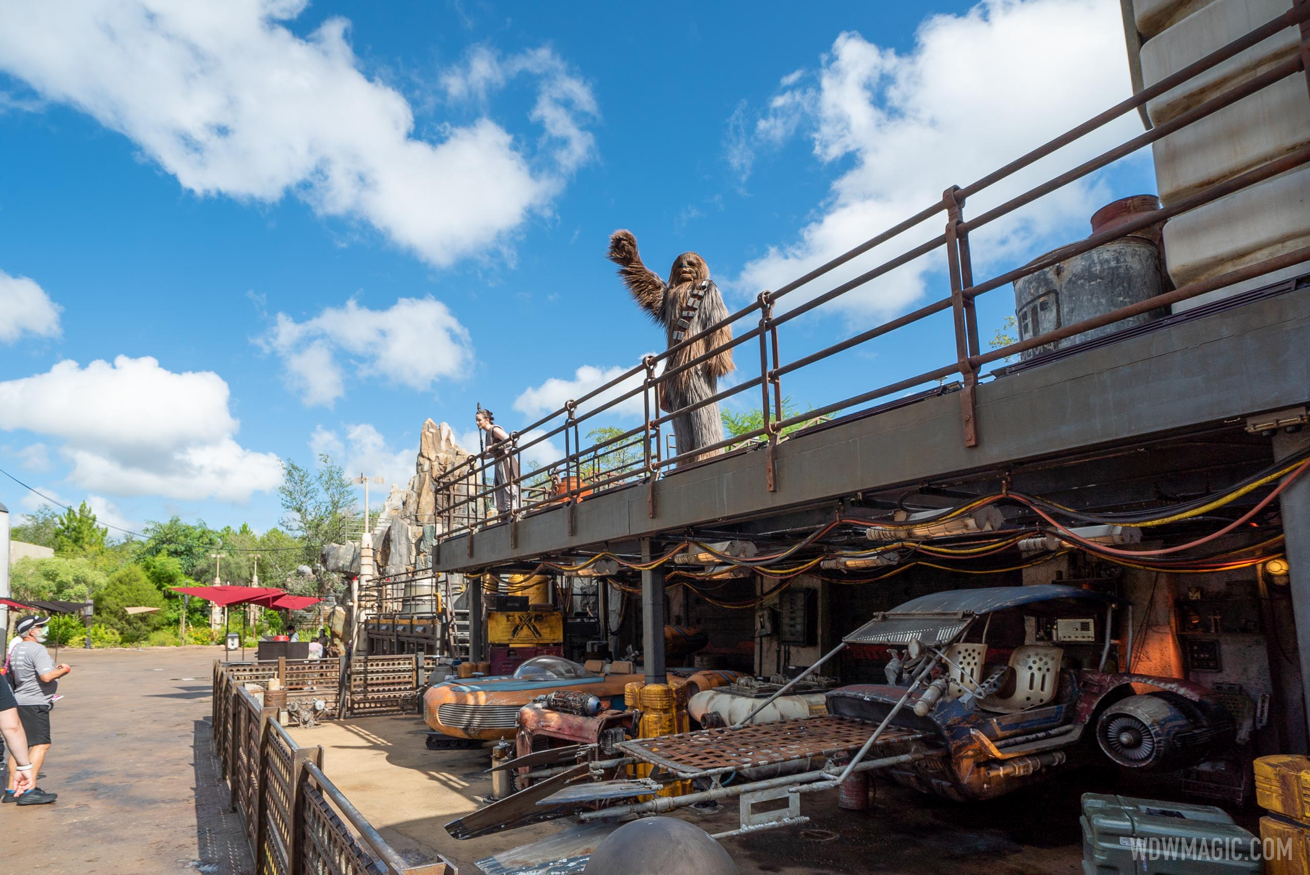 Chewbacca and Rey appear at a distance in Galaxy's Edge