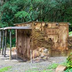 New building construction at Kilimanjaro Safaris - October 26 2020