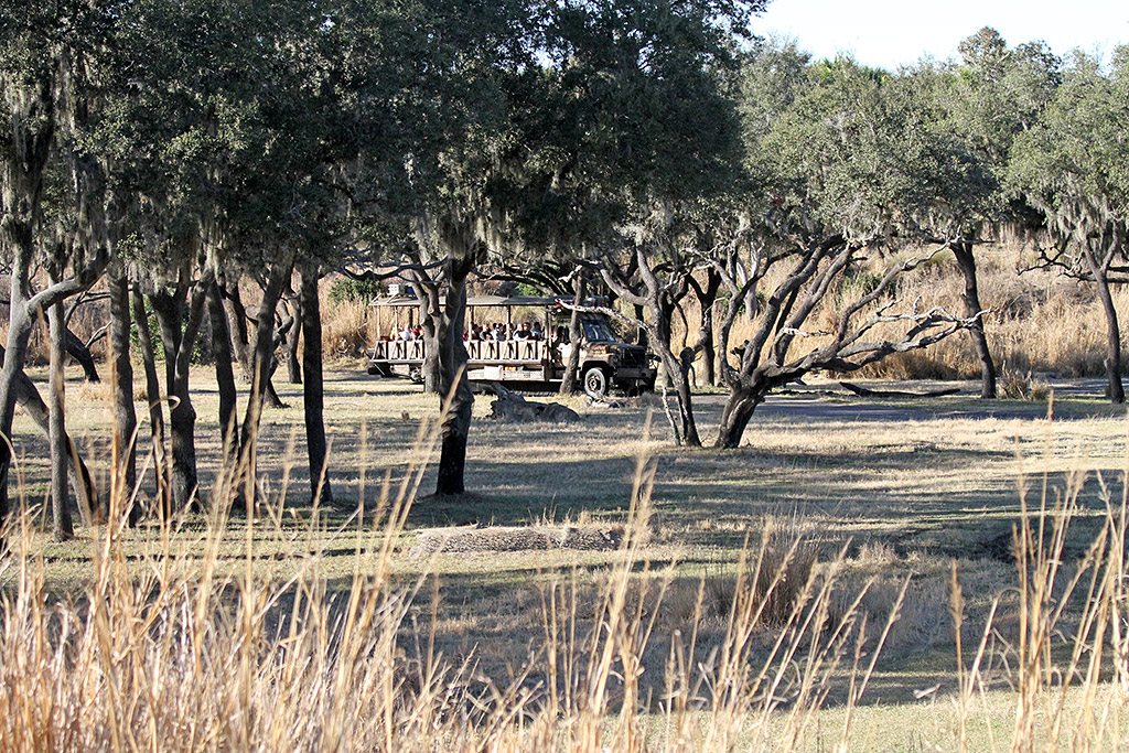 Kilimanjaro Safaris - Safari Truck