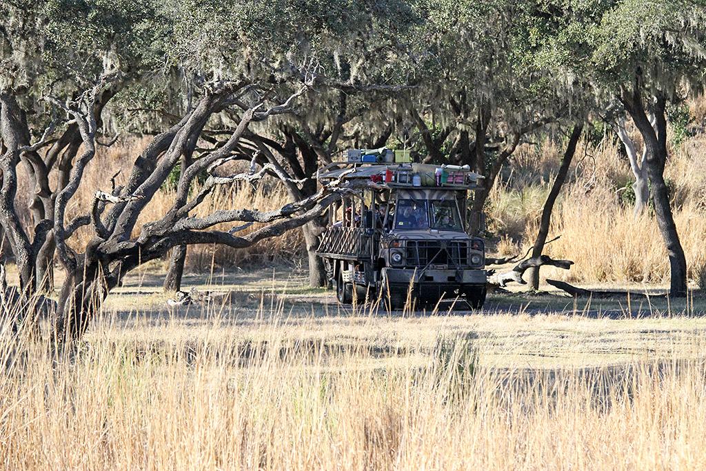 Kilimanjaro Safaris - Safari Truck