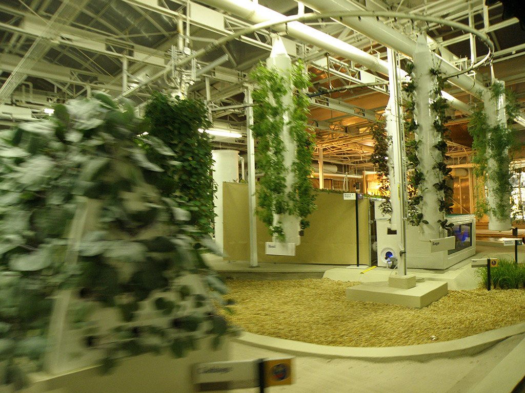 New Living with the Land greenhouse scene