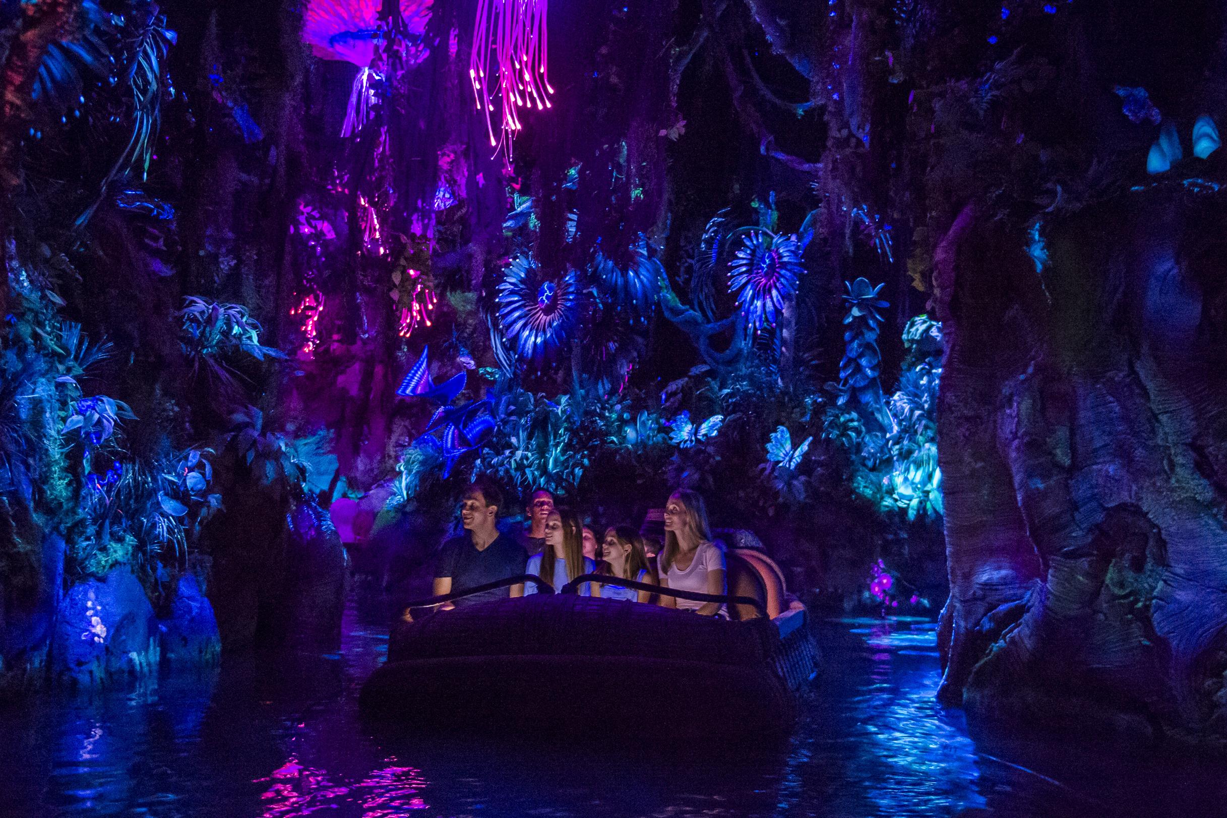 Na'vi River Journey ride