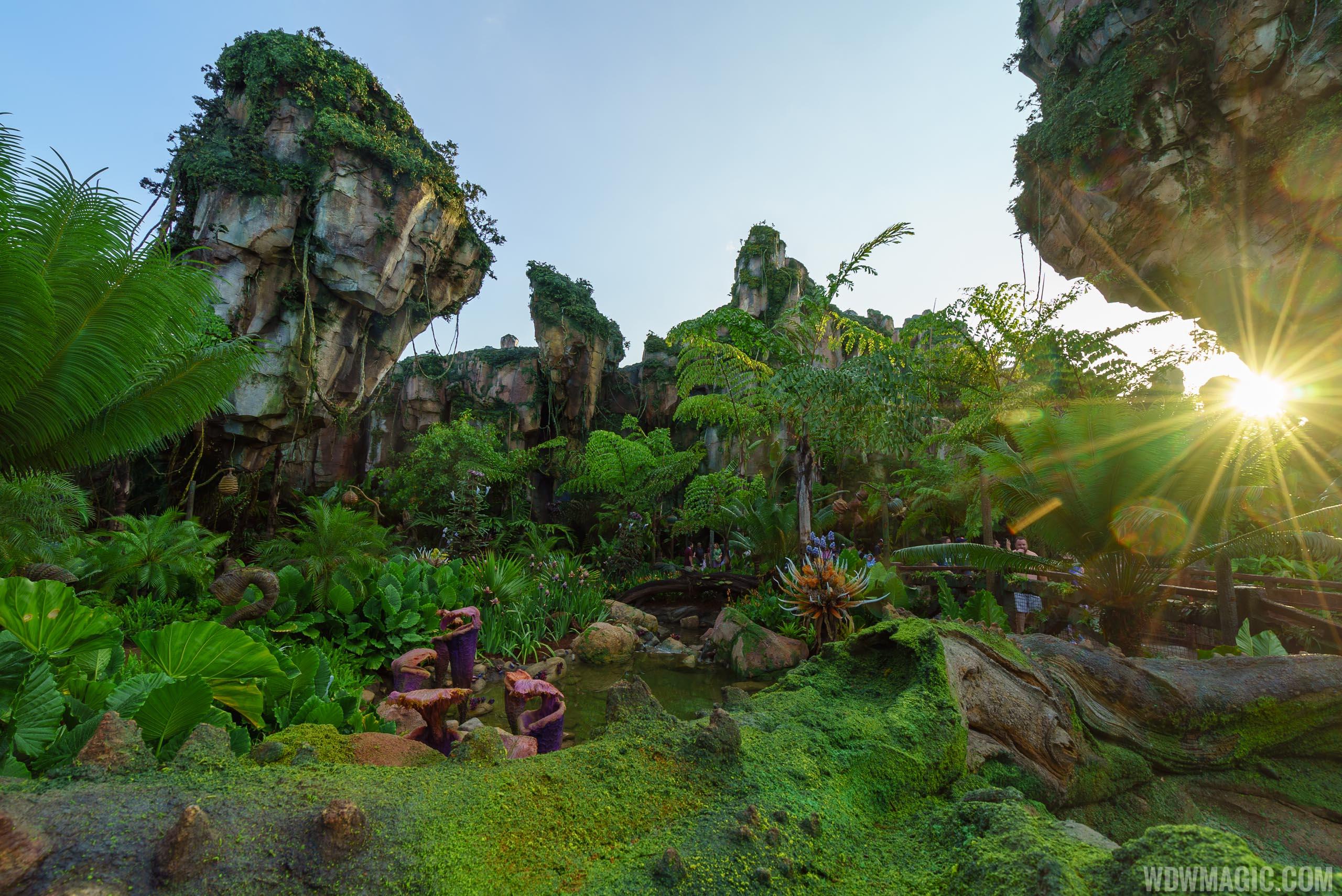 Na'vi River Journey overview