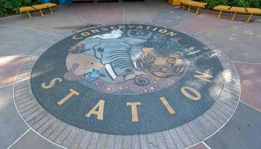 Rafiki's Planet Watch reopens this summer at Disney's Animal Kingdom