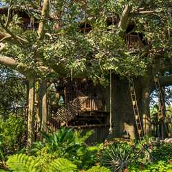 Swiss Family Treehouse overview