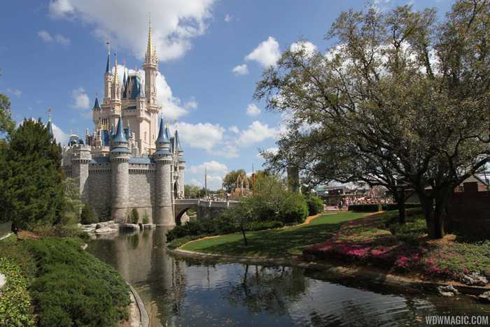 Taste of Magic Kingdom Park VIP Tour overview