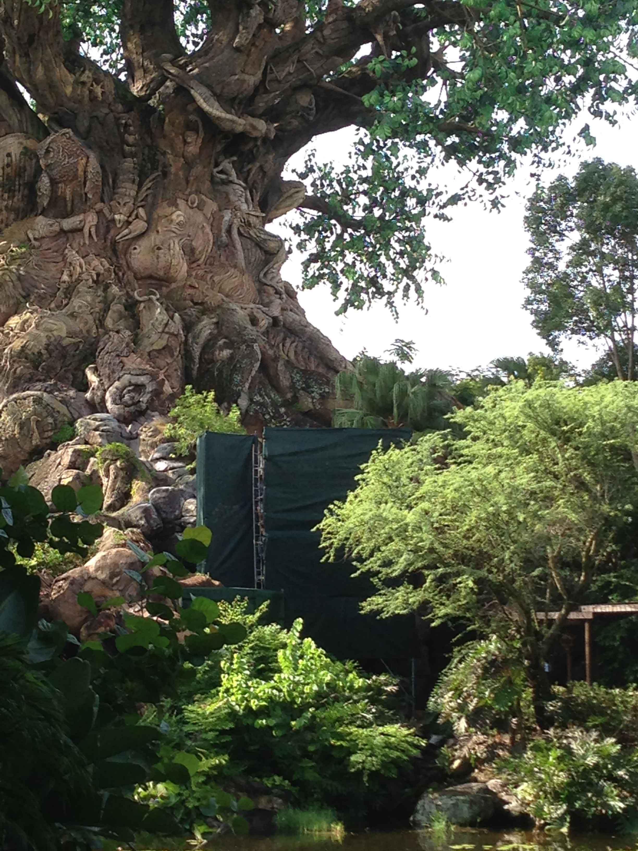 Tree of Life refurbishment