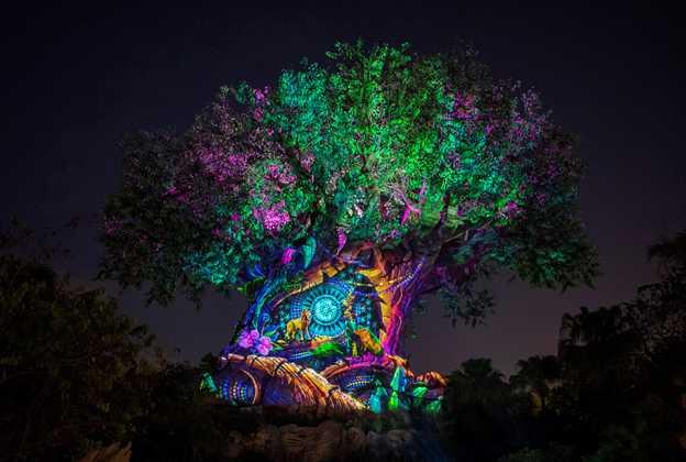 Tree of Life Awakens Lion King story
