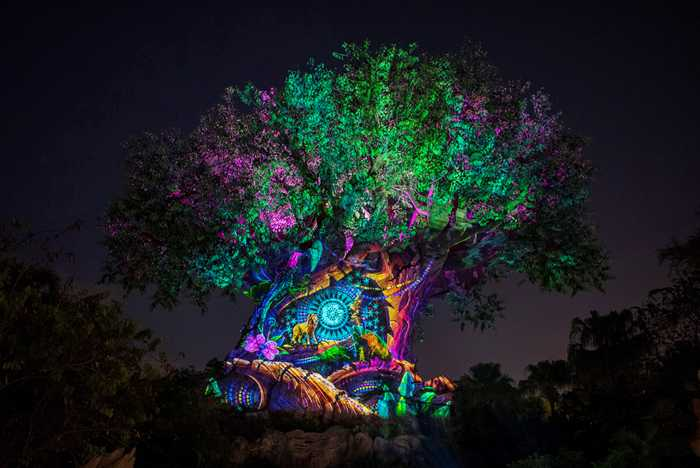 Tree of Life Awakens Lion King story