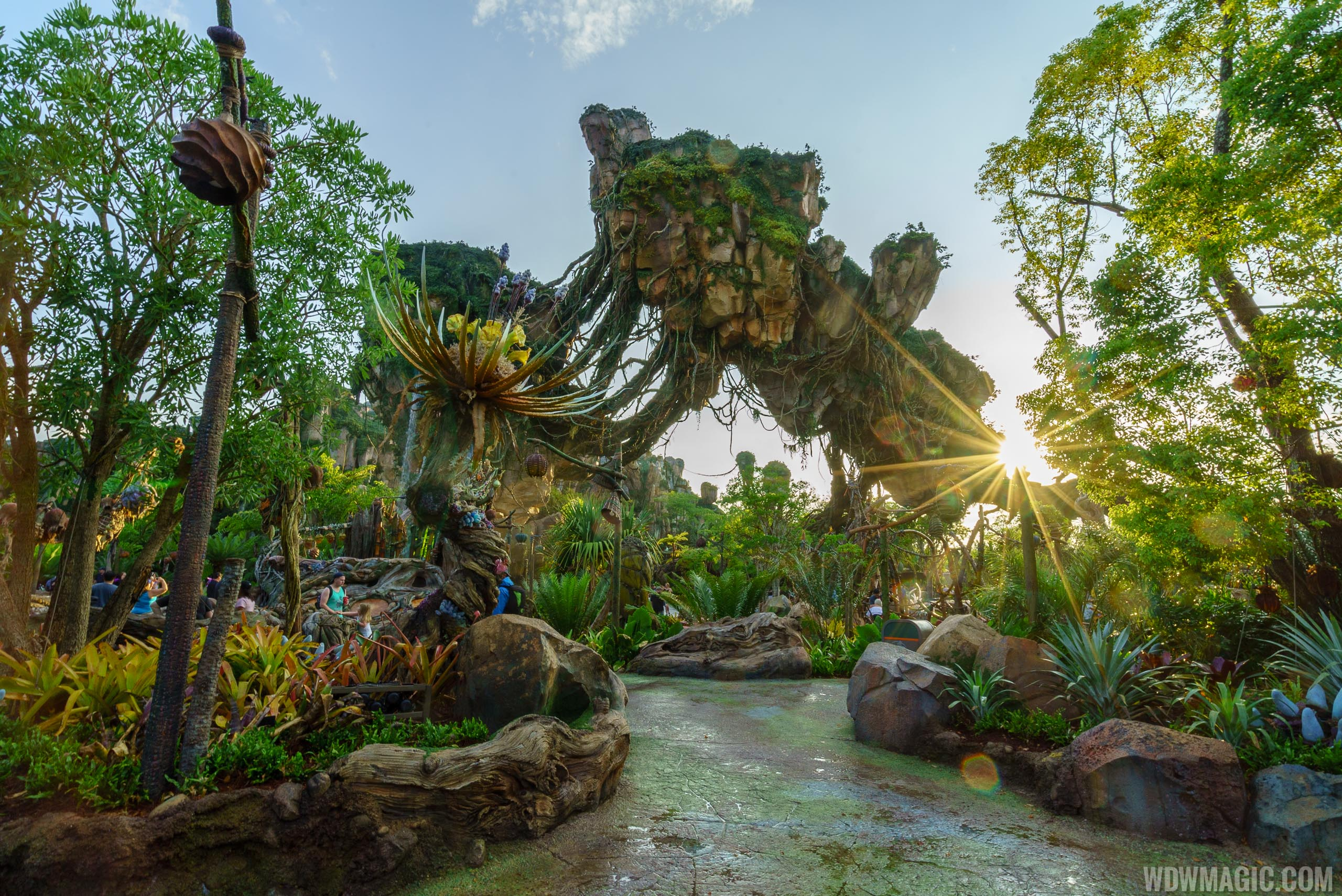 Pandora is one of the destinations on the Ultimate Nights of Adventure VIP Tour