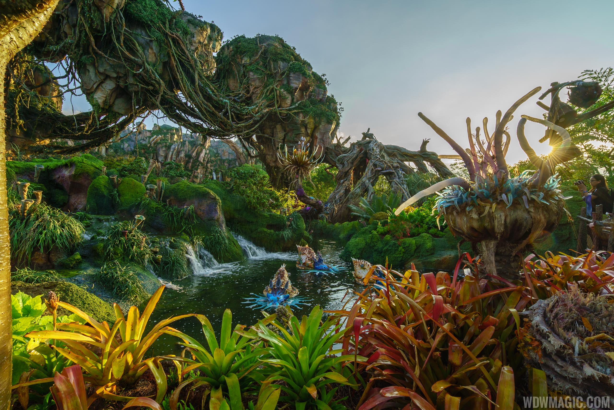 Pandora - The World of Avatar can be experienced as part of Disney After Hours