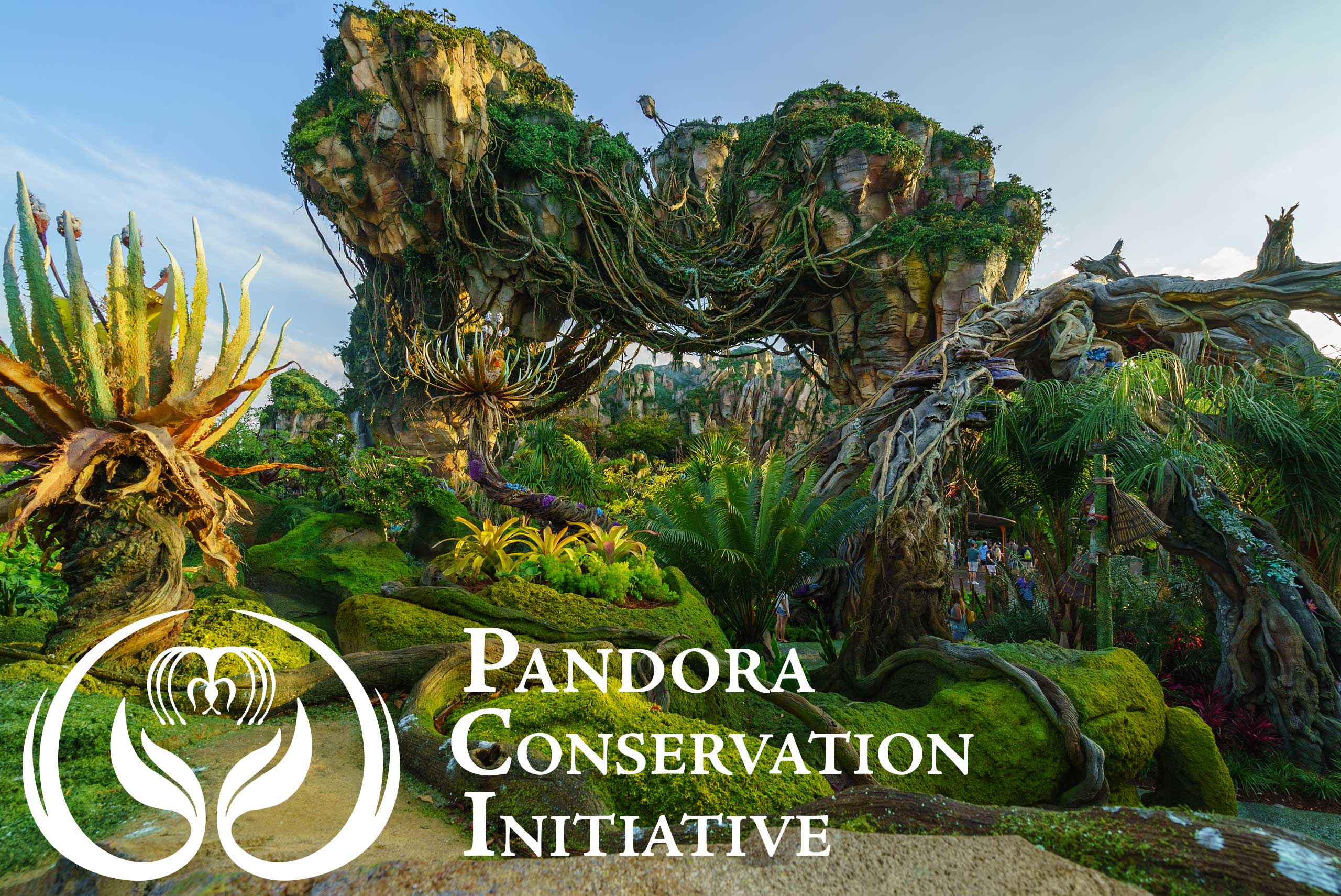 The Pandora Conservation Intiative