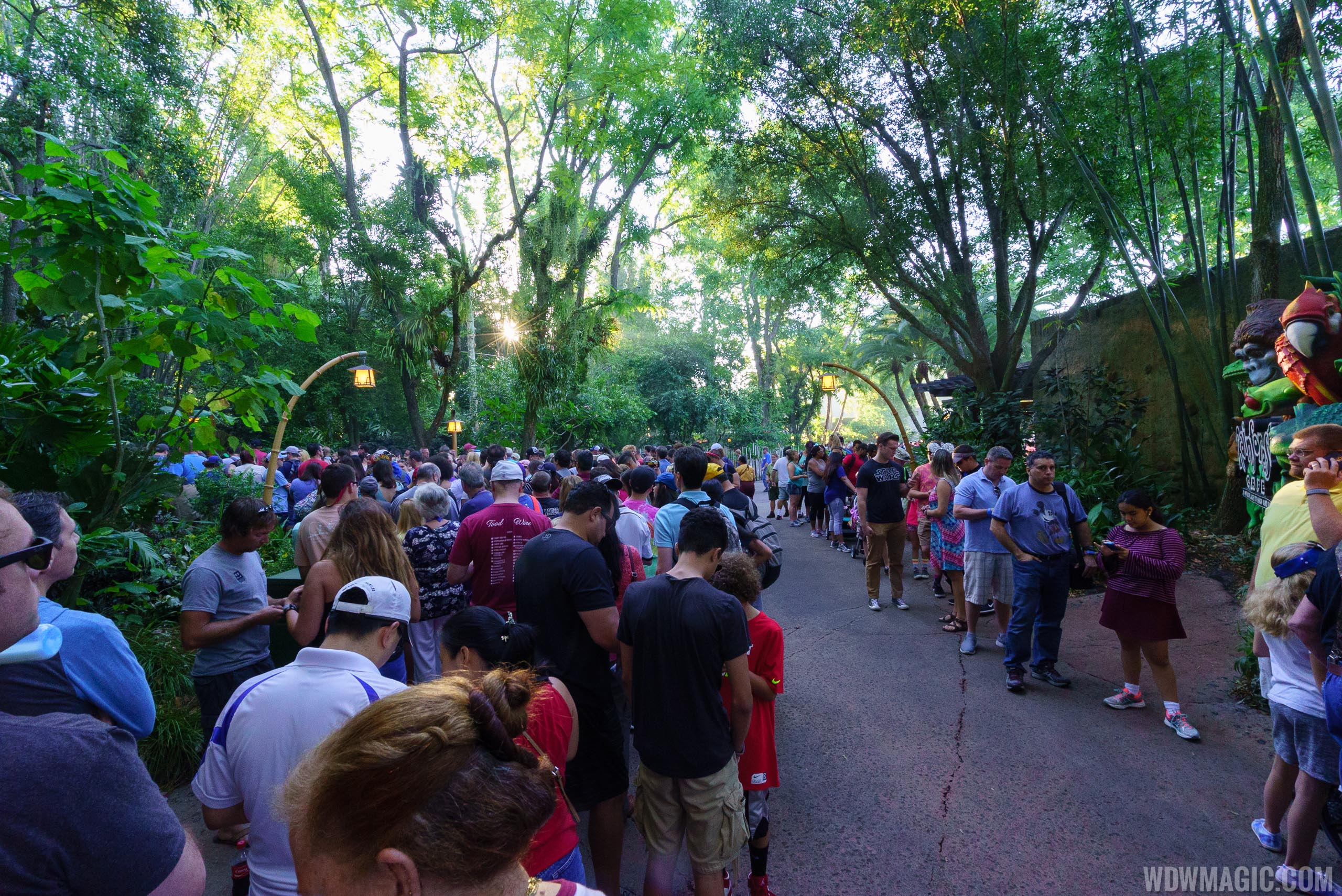 opening day crowds at pandora the world of avatar photo 1 of 13