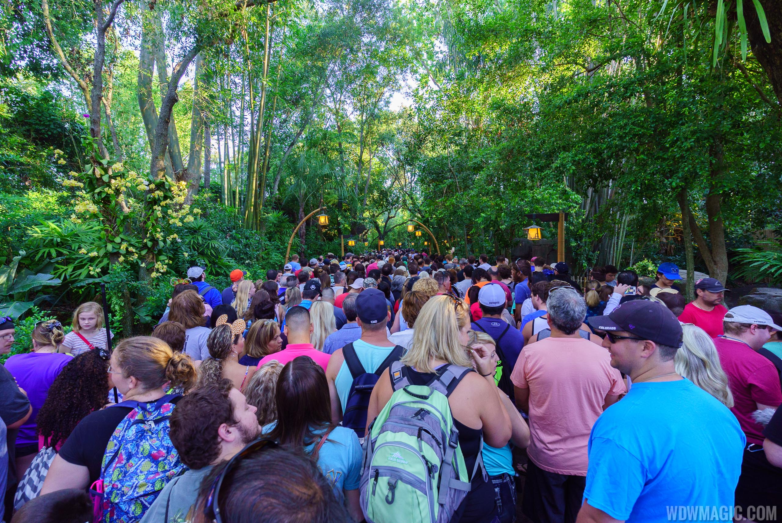 Guests line the Oasis walkways