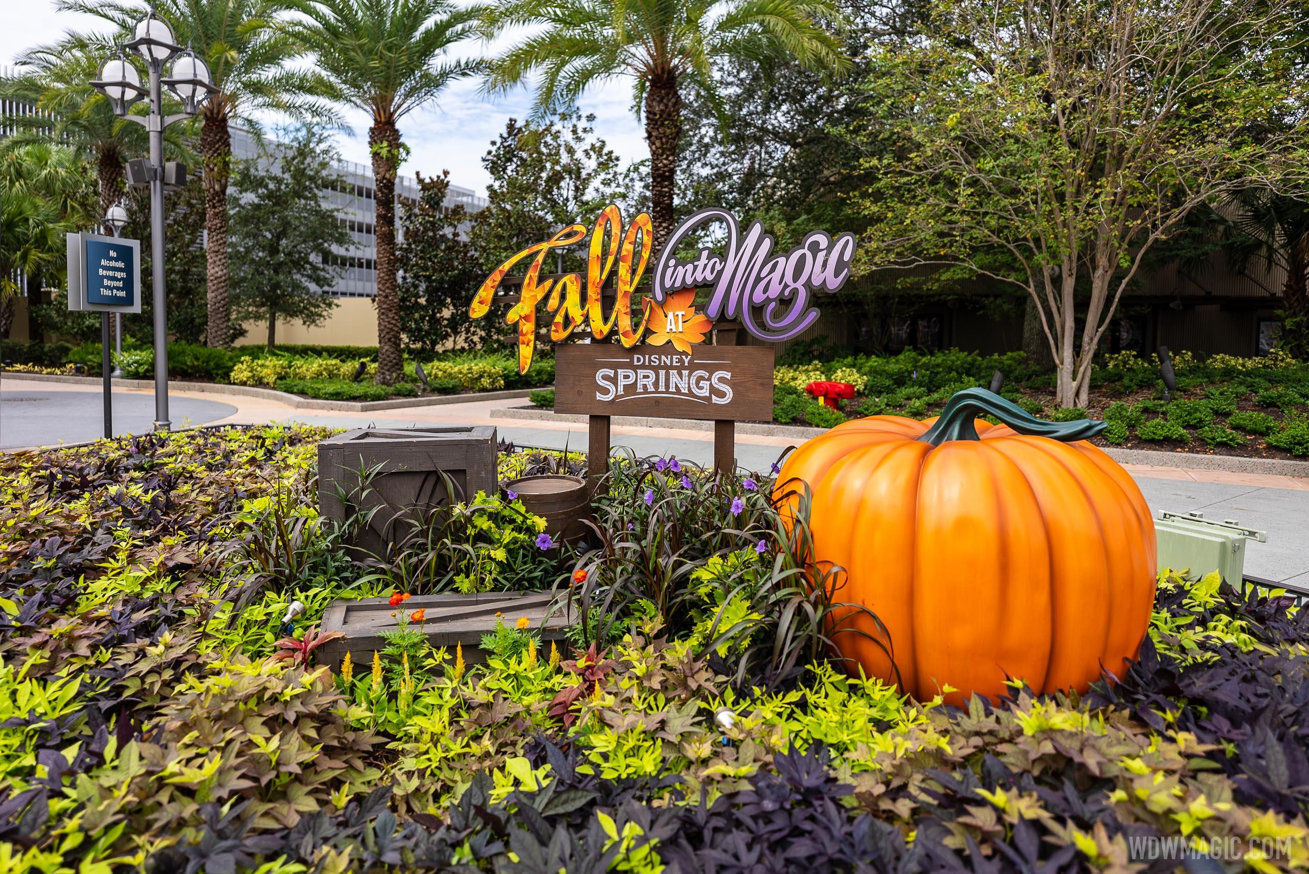 Fall into Magic at Disney Springs