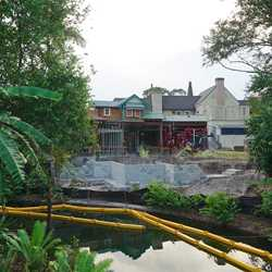 Adventureland Veranda construction