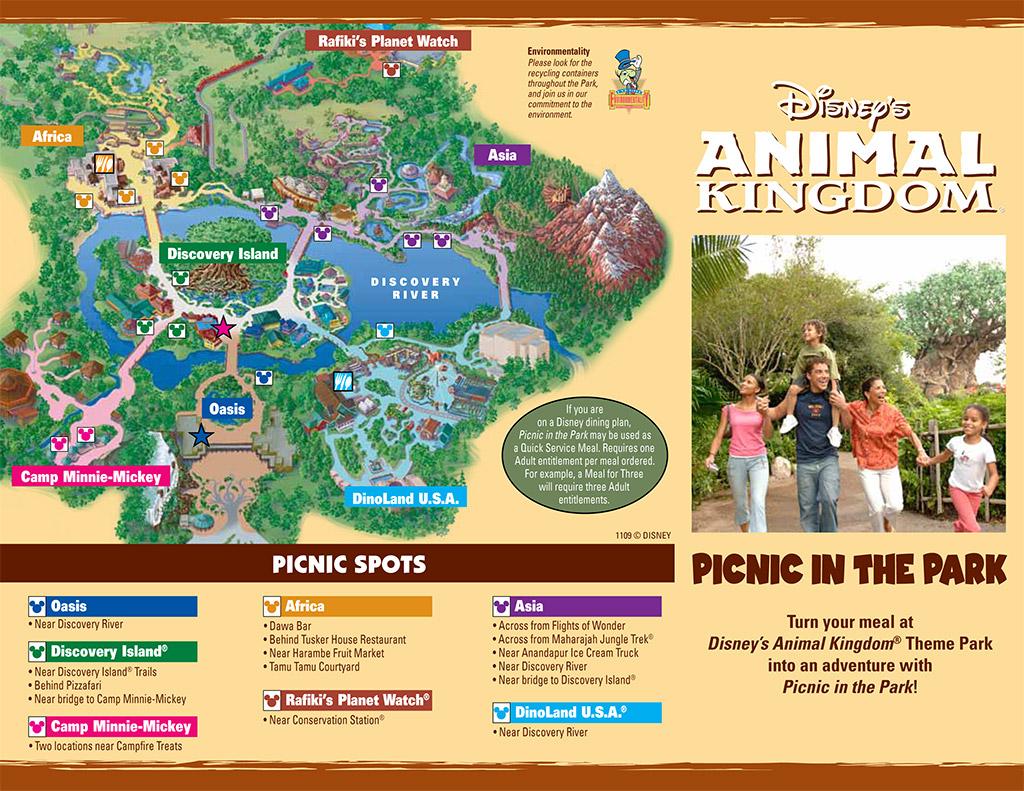 Animal Kingdom Picnic in the Park guide