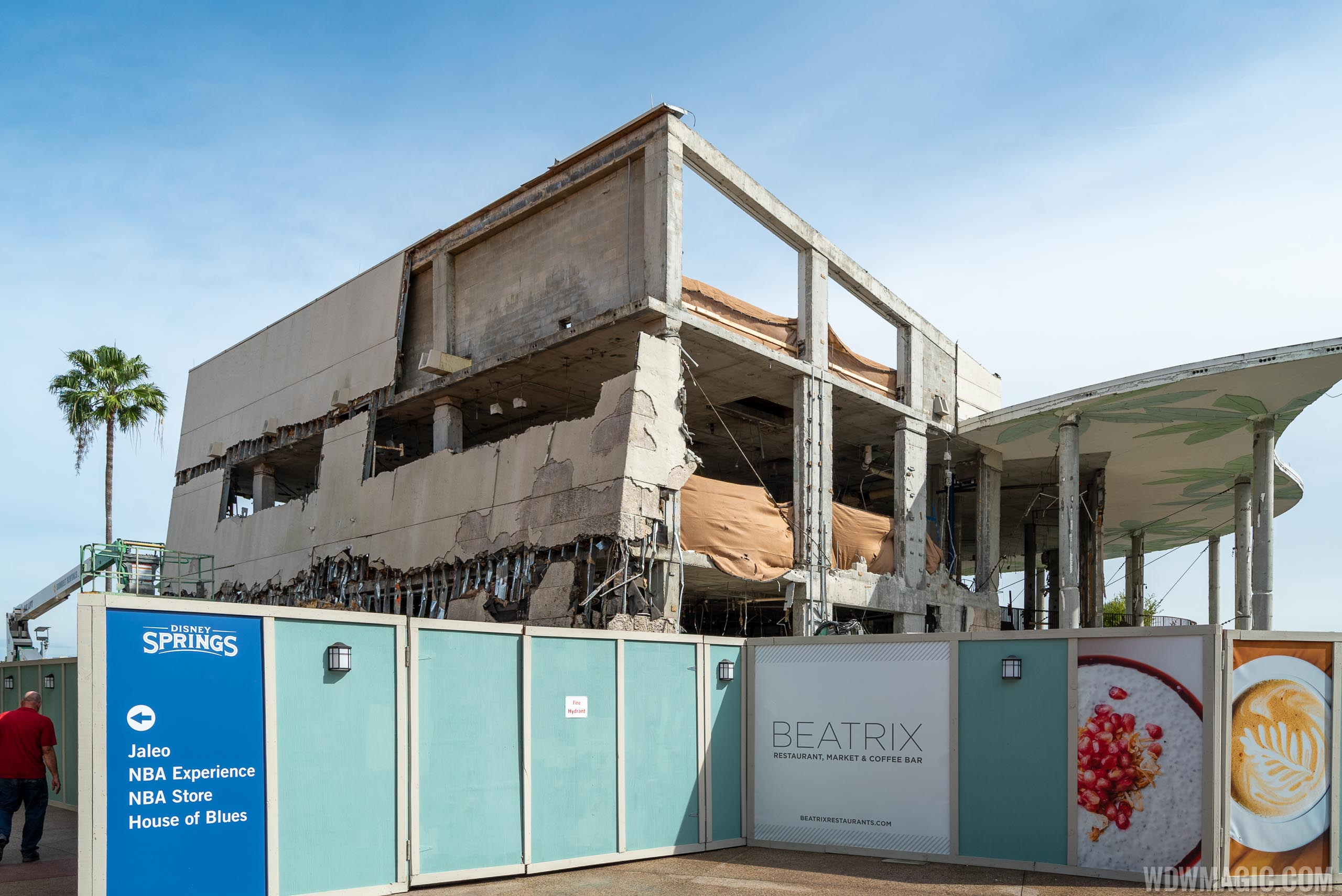 Bongo's Demolition - November 2019