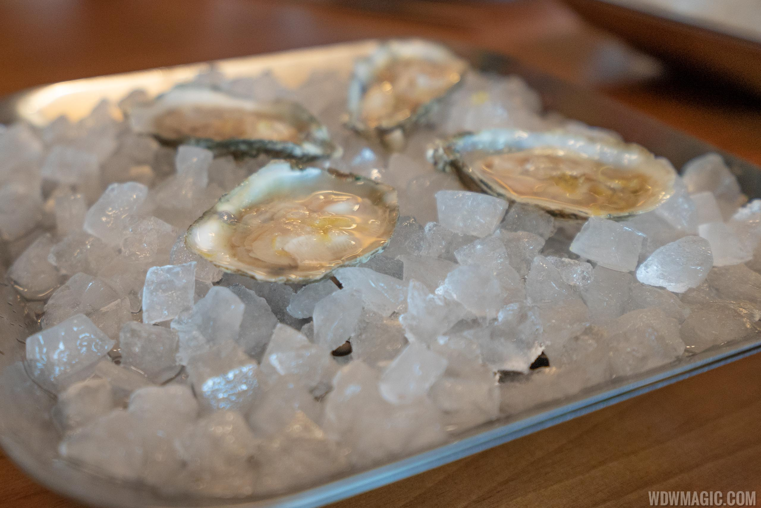 Chef's tasting menu: José's Way - Oysters with lemon, gin and tonic