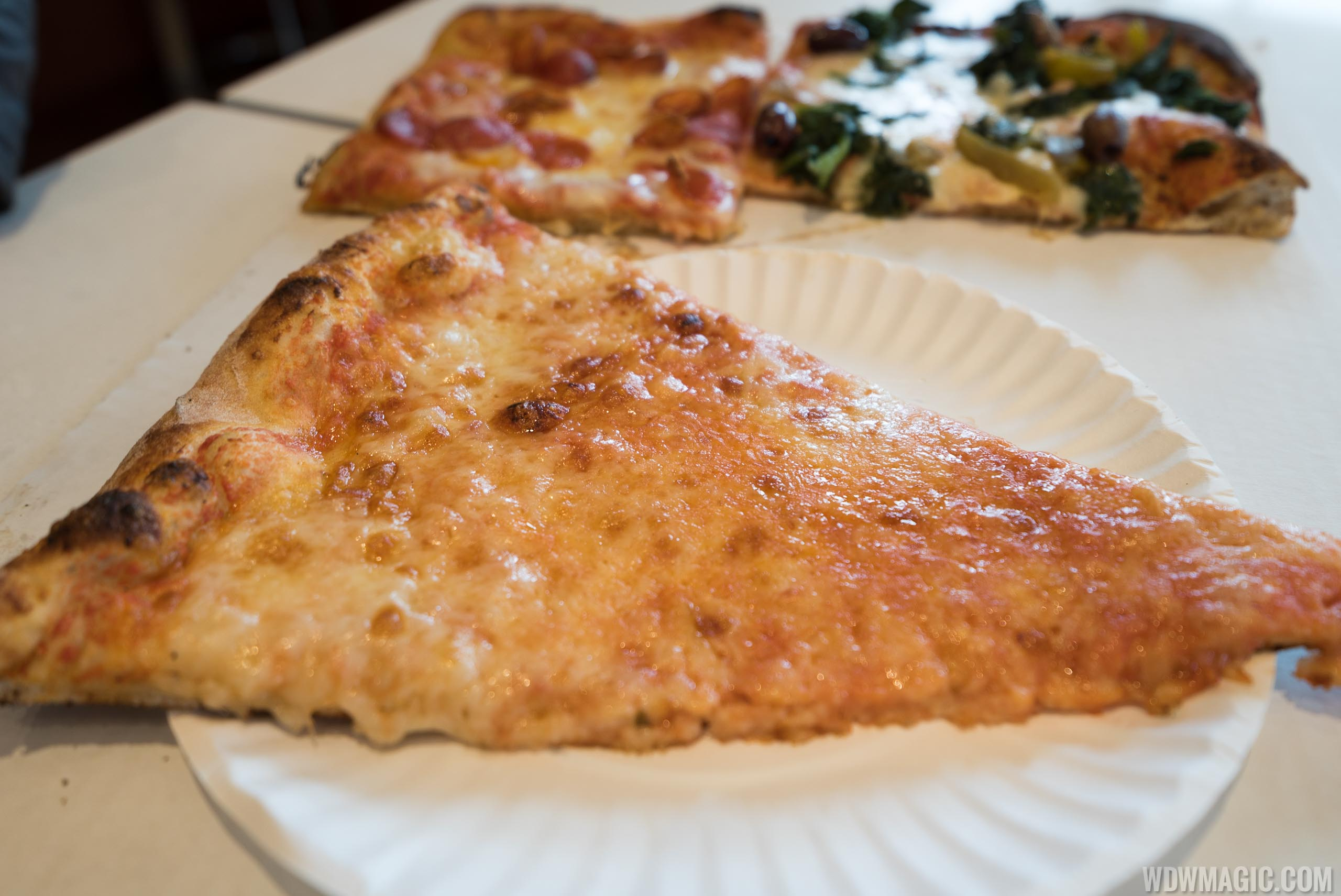 Pizza Ponte - Slice of The Big Roman