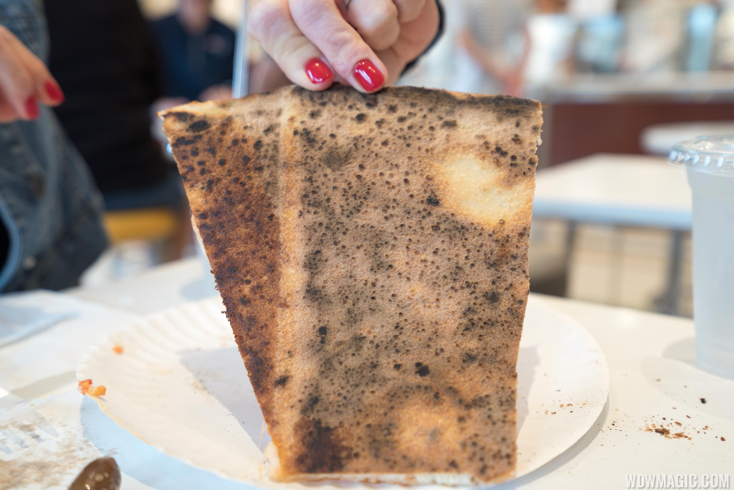 Pizza Ponte - Underside of pizza crust