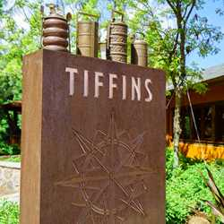 Tiffins overview