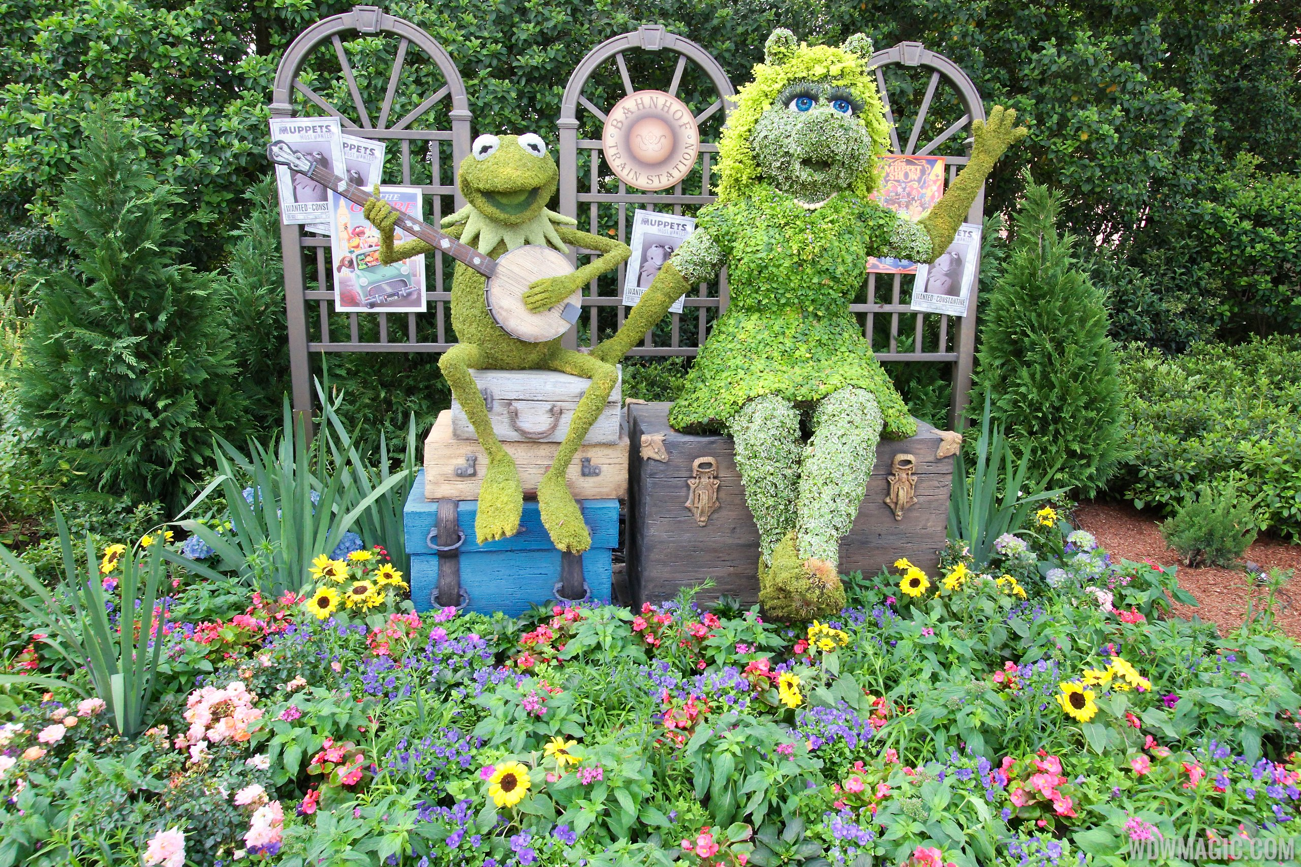 2014 Epcot Flower and Garden Festival - Kermit and Miss Piggy Muppets topiary