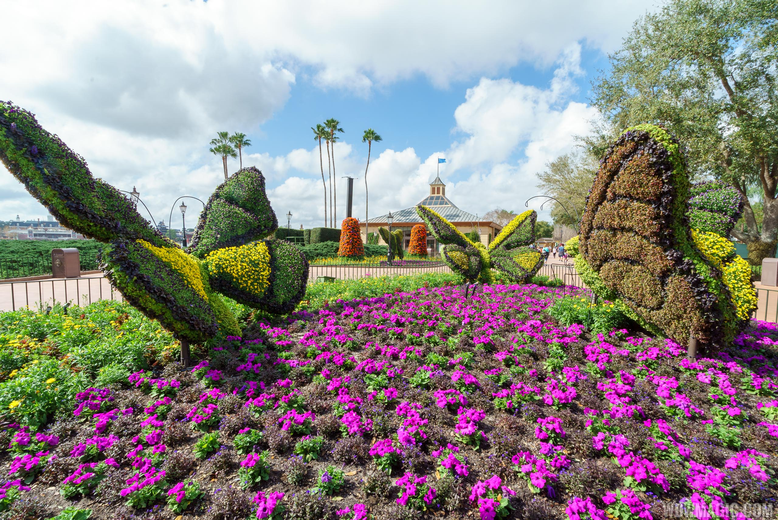 2017 Flower and Garden Festival - Butterflies topiaries in Showcase Plaza
