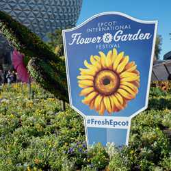 2019 Epcot International Flower and Garden Festival topiary tour