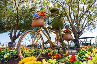 PHOTOS - Full topiary and gardens line-up for the 2021 Taste of Epcot International Flower and Garden Festival