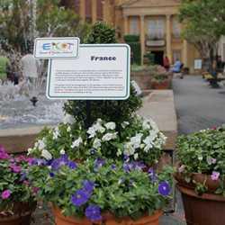 2007 International Flower and Garden Festival - World Showcase