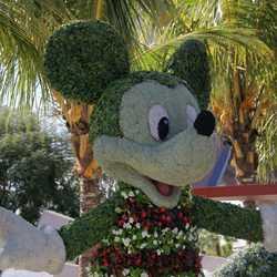 2008 International Flower and Garden Festival