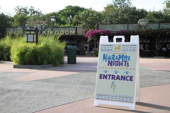 Harambe Nights opening night