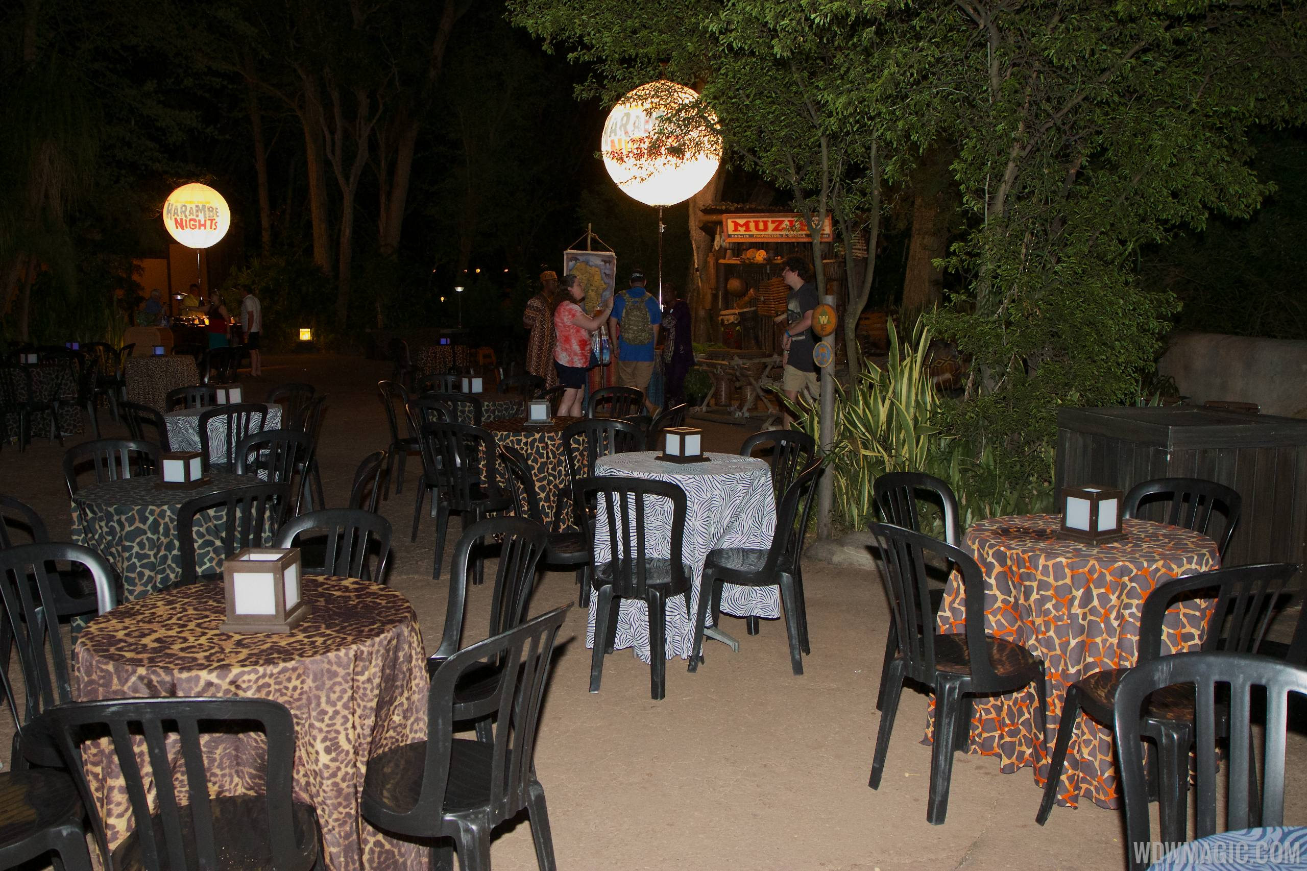 Harambe Nights - Outdoor seating stations