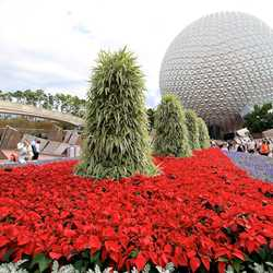 Epcot Main entrance decorations for 2010