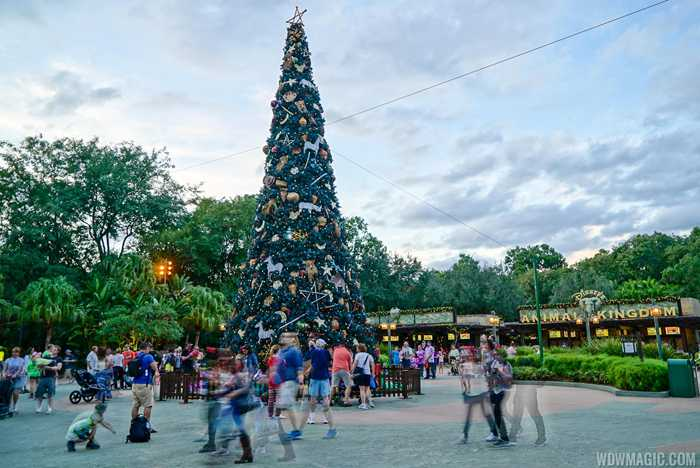 Disney's Animal Kingdom holiday decorations 2015