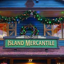 Disney's Animal Kingdom holiday decorations 2015