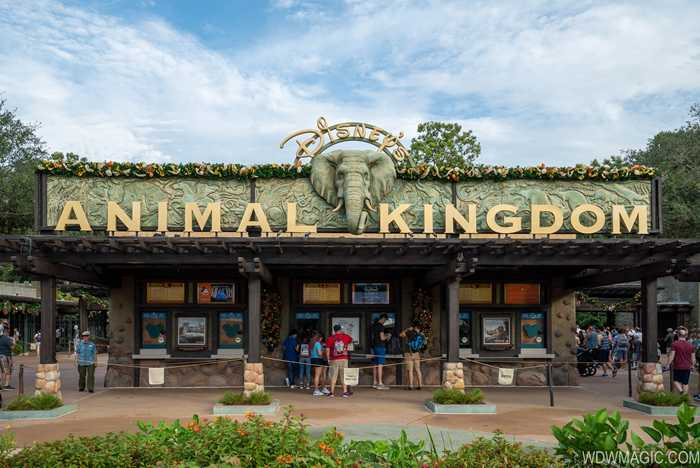 Disney's Animal Kingdom Christmas Holiday decor 2019